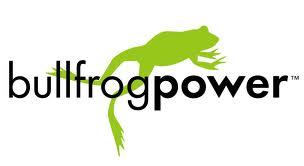 Bullfrog logo 2